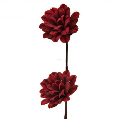 Juego de 2 flores Roseton Belinda Flowers