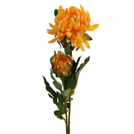Flores Marigold