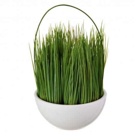 Planta espigas con maceta Haus