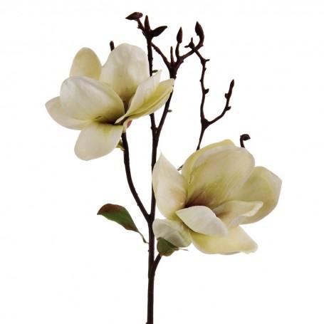 Rama con Flor Magnolia Haus