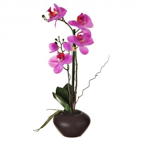 Arreglo Flor Orquídea Fucsia con maceta Haus