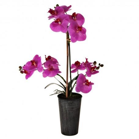 Arreglo Orquídea Fucsia con maceta Haus