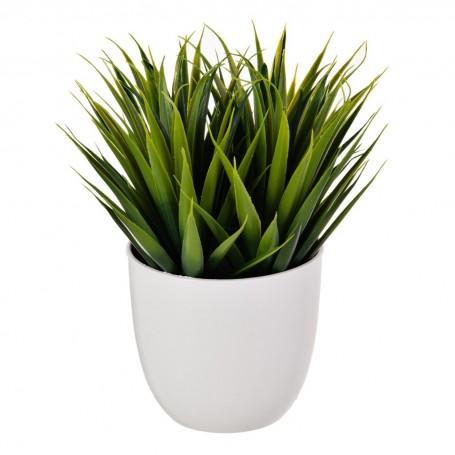 Planta Verde con maceta redonda Haus