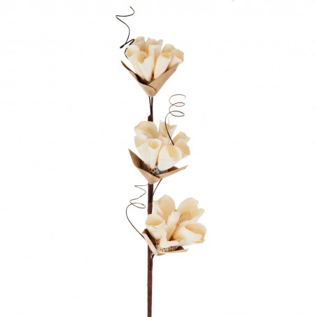 Racimo Botones Vijao Belinda Flowers