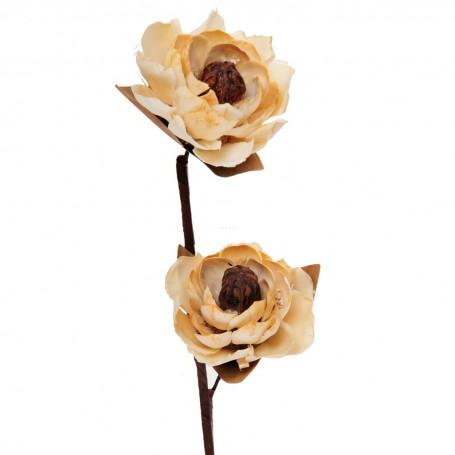 Racimo con 2 flores Cedro Belinda Flowers
