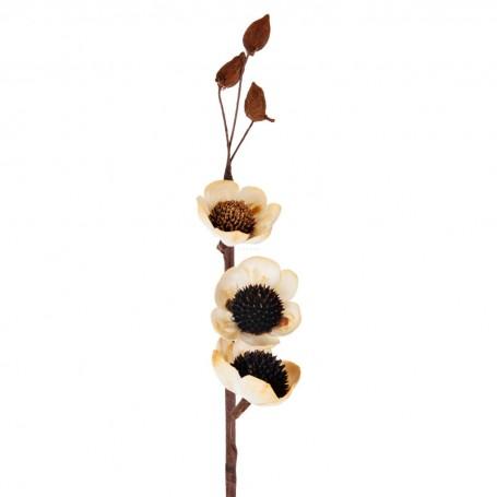 Racimo con 3 flores Amapola Belinda Flowers