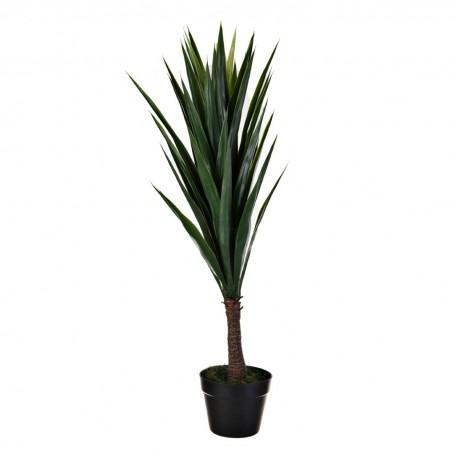 Planta Yucca con maceta Haus
