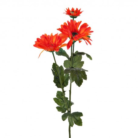 Gerbera con 3 flores