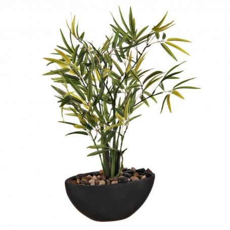 Planta Bamboo con maceta