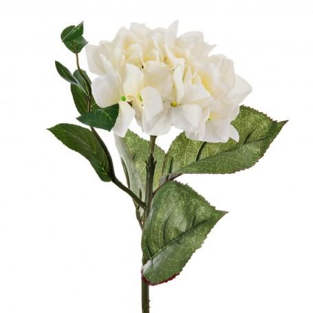 Flor Hortensia Blanca