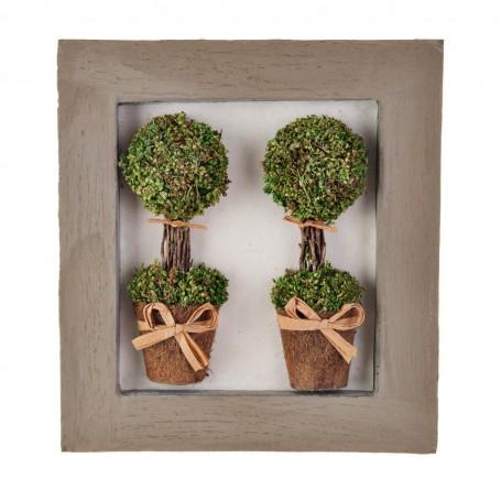 Cuadro con marco y 2 plantas topiario