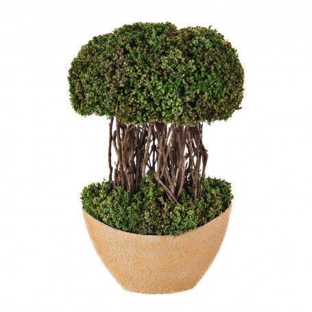 Planta Topiario con base de resina
