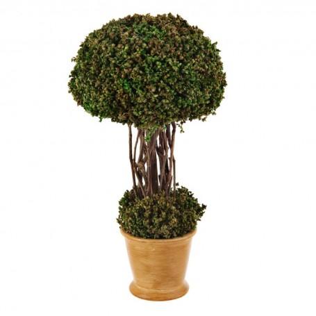 Planta Topiario pequeño con base de resina