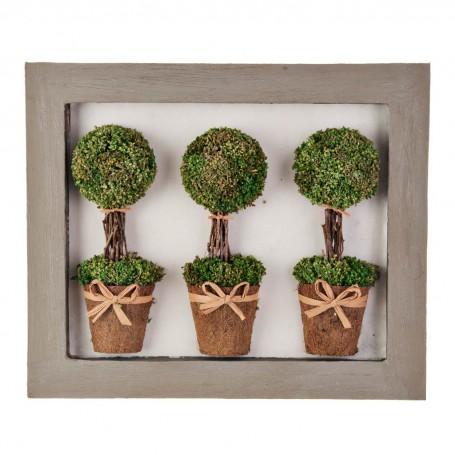 Cuadro con marco y 3 plantas topiario
