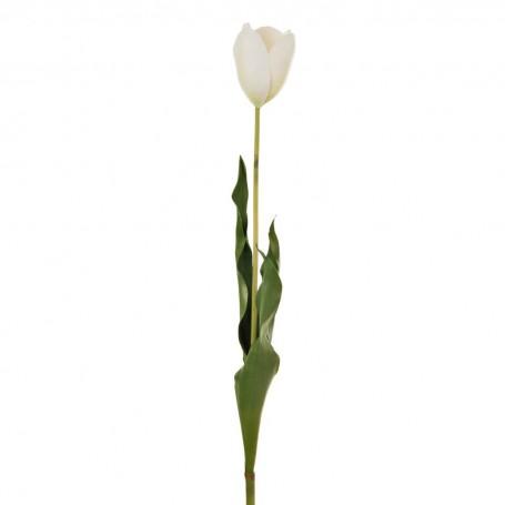 Flor Tulipán Holandés 58 cm Haus