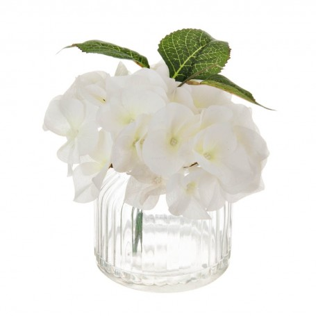 Arreglo Hydrangea con maceta de vidrio Haus