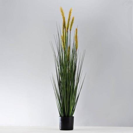 Planta Espiga Alta con flor y maceta Haus