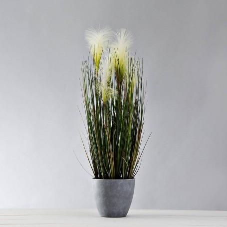 Planta Espiga con flor y maceta Haus