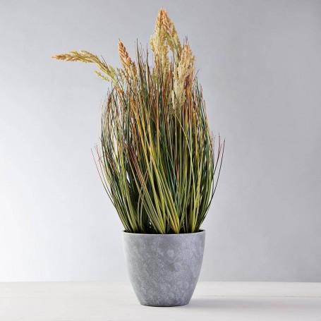 Planta Espiga Pequeña con flor y maceta Haus