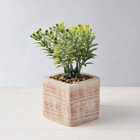 Mini planta con macetero Crudo / Naranja