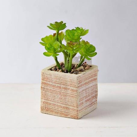Mini planta con macetero Naranja / Crudo
