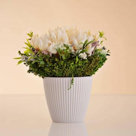 Arreglo Floral Monuna con maceta
