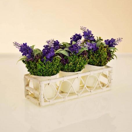 Juego de 3 mini arreglos florales lavanda con canasta / maceta