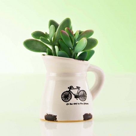 Mini planta artificial Suculenta con maceta jarra blanca