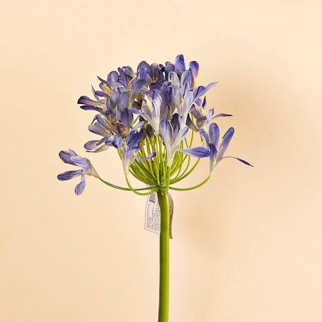 Flor Agapanthus Poliéster / Plástico / Alambre Haus