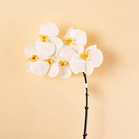 Flor Orquídea Blanca x6 Haus