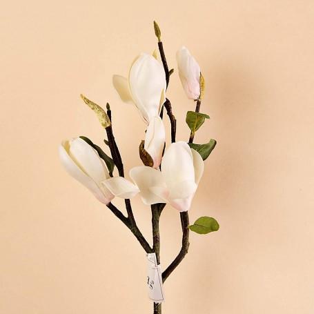 Rama pequeña con Flor Magnolia Haus