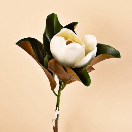 Flor Magnolia con hojas Haus