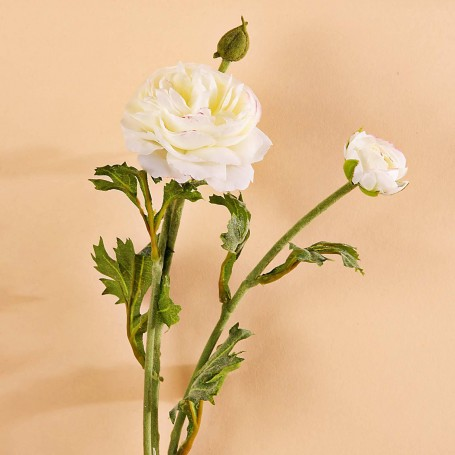 Flor Ranunculus x3 Haus