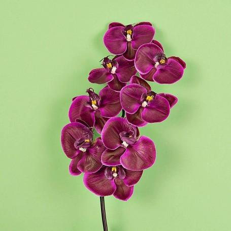 Flor Orquídea x8 Haus