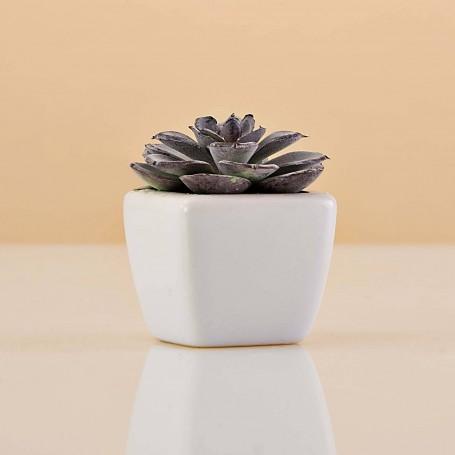 Mini planta artificial Verde / Morado con maceta Haus