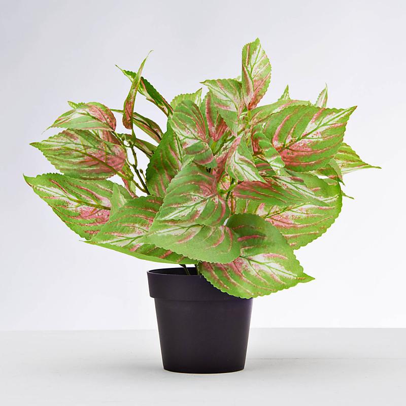 Planta artificial Hoja Verde / Rosado con maceta Haus
