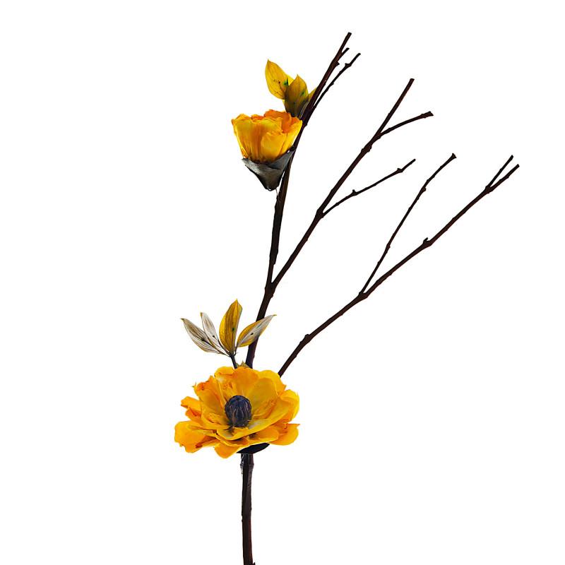 Rama Silvestre Magnolia Belinda Flowers