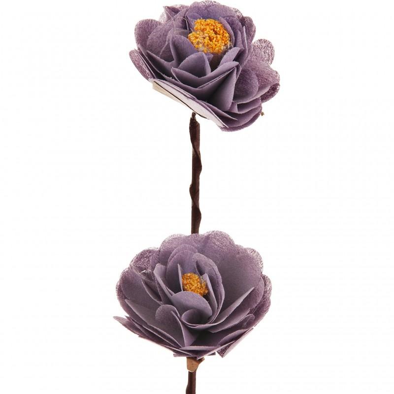Flor Mini Peonia con semilla Belinda Flowes