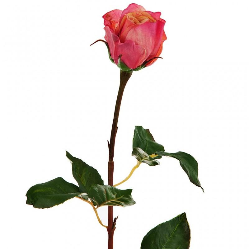 Flor Rosa durazno / rojo Haus