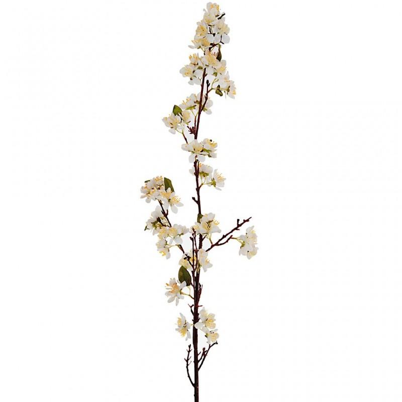 Flor Manzano blanco Haus