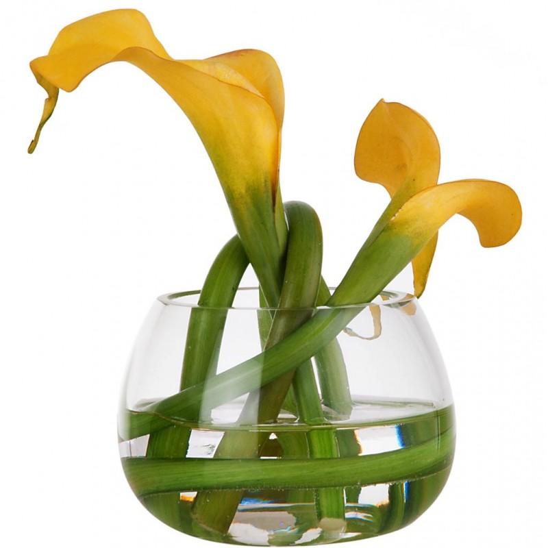 Arreglo floral Calla Lily con florero de vidrio Haus